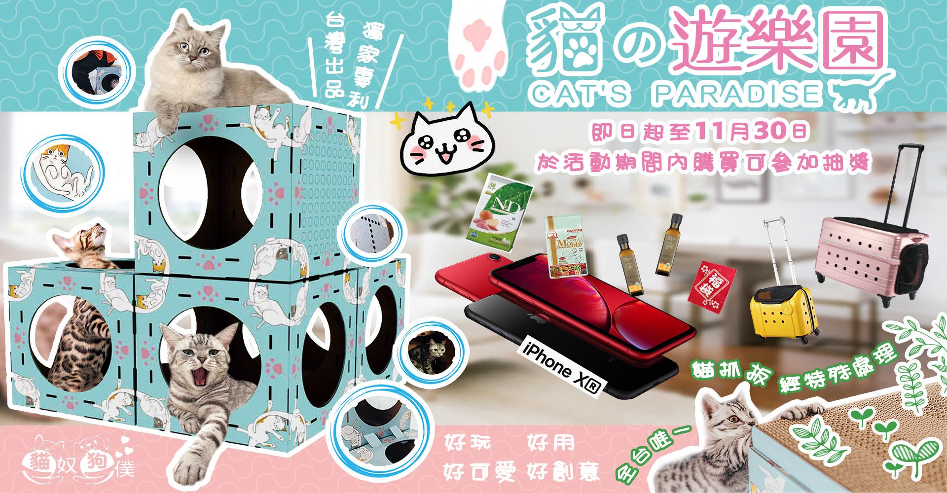 貓的遊樂園