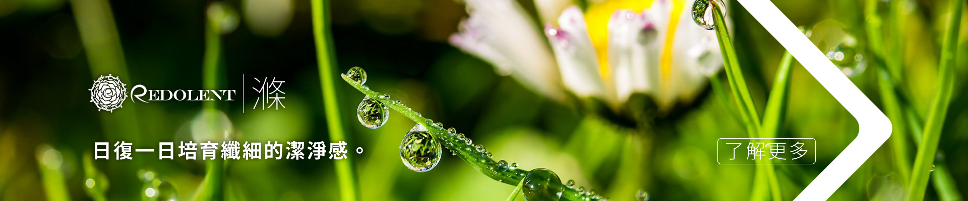 Redolent 花雨 |滌 :日復一日培育纖細的潔淨感。