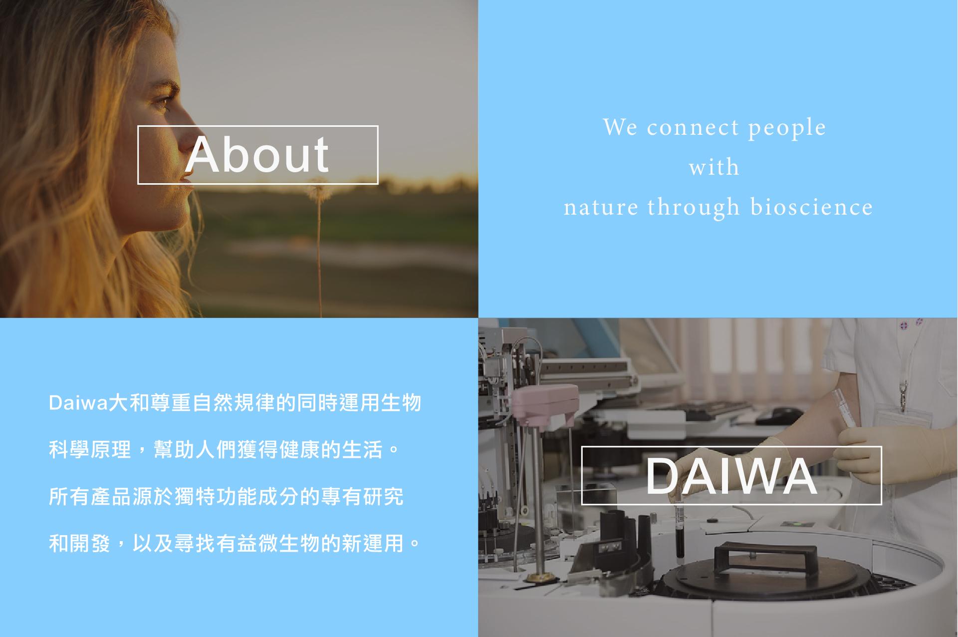 About Daiwa 大和