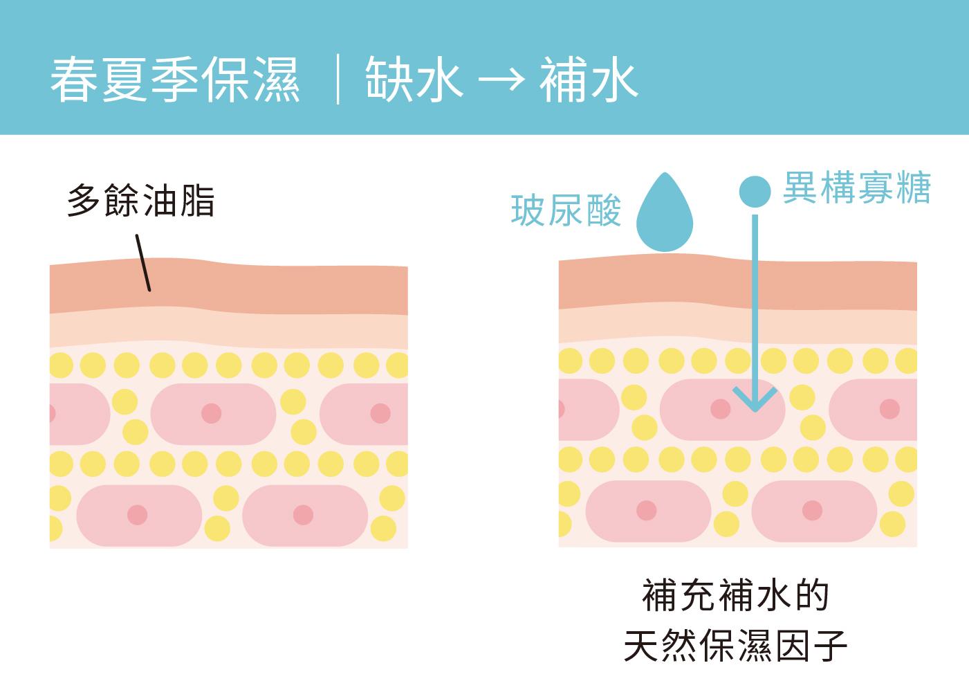 換季保濕方法-春夏季缺水補水