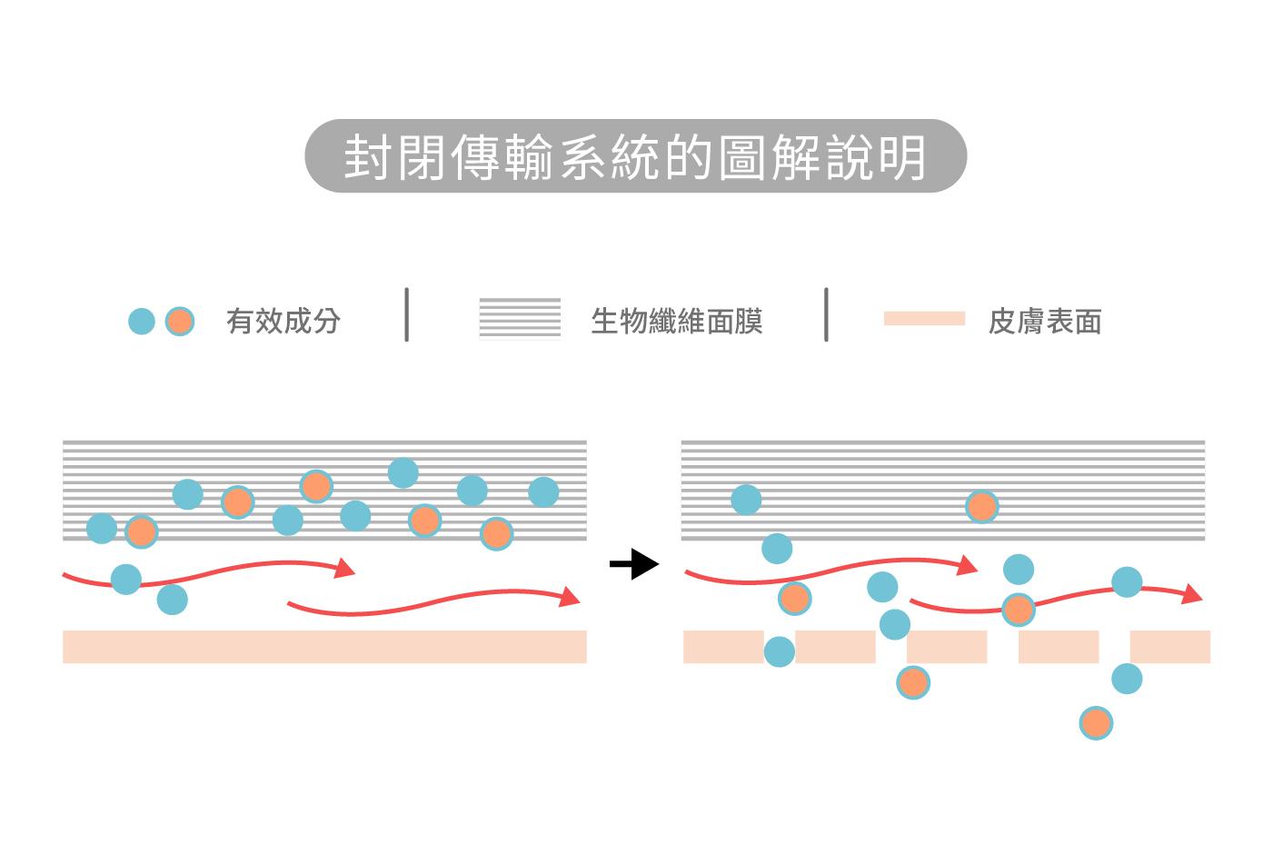 ODT (Occlusive Dressing Treatment)為新的經皮吸收技術,生物纖維面膜與肌膚間形成封閉傳輸系統