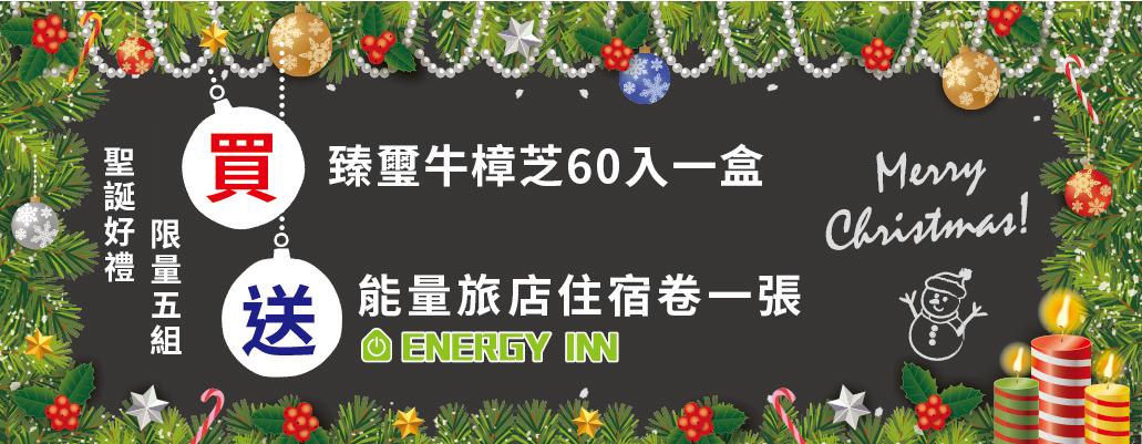 牛樟芝,能量旅店