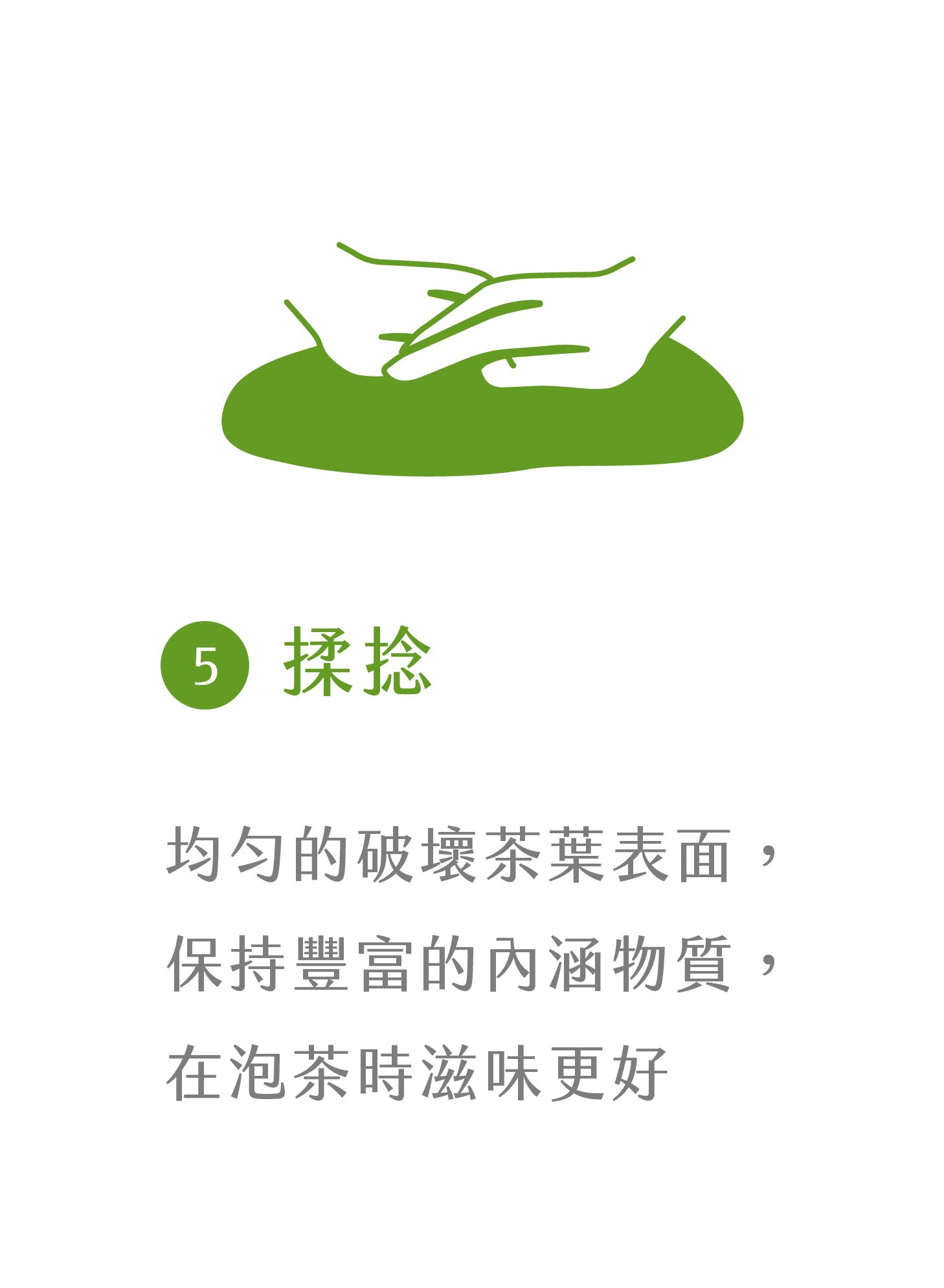 晁鎮茶苑古樹茶雨林製作流程揉捻