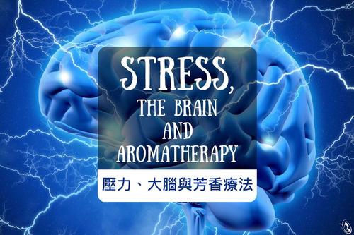 用精油舒緩壓力