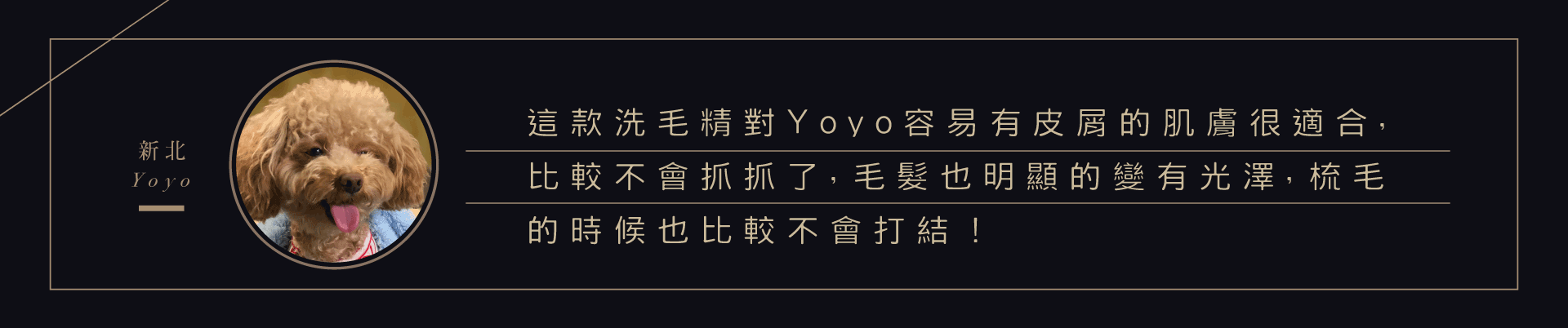 新北的Yoyo是迷你貴賓狗,這款洗毛精對貴賓犬容易有皮屑的皮屑的肌膚很適合,洗完後Yoyo比較不會抓抓了,毛髮也明顯地變有光澤,梳毛的時候也比較不會打結了。