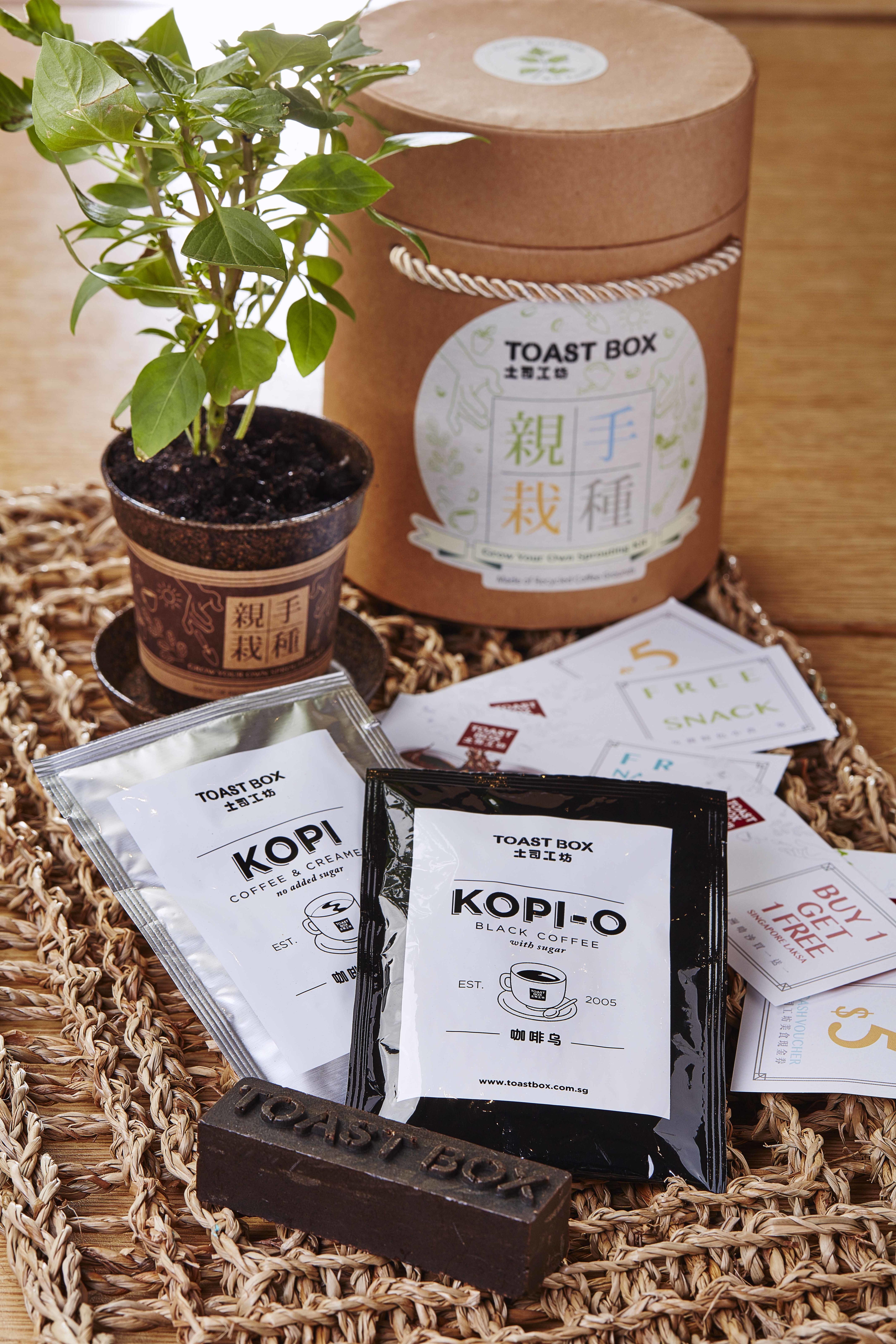 Toast Box   Coffee Grounds Planting Kit