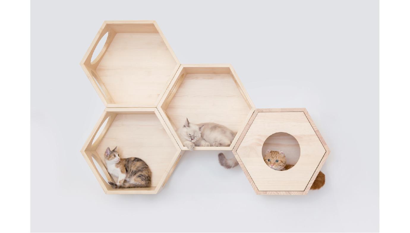 貓跳台,貓窩,貓裝潢,貓空間,貓走道,貓屋