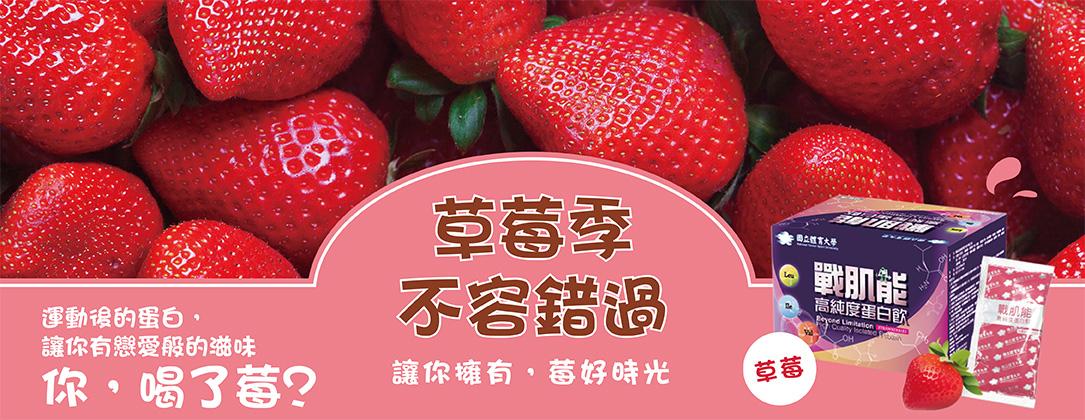 戰肌能草莓
