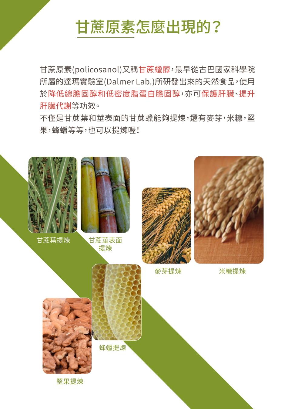 甘蔗原素怎麼出現的
