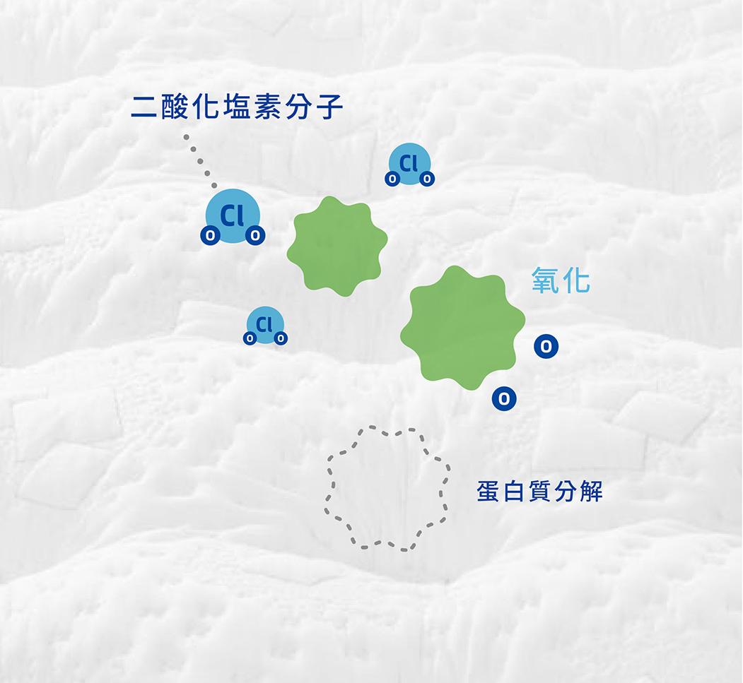 加護靈的二酸化塩素分子與目標產生氧化反應後,將有害物質上的蛋白質分解