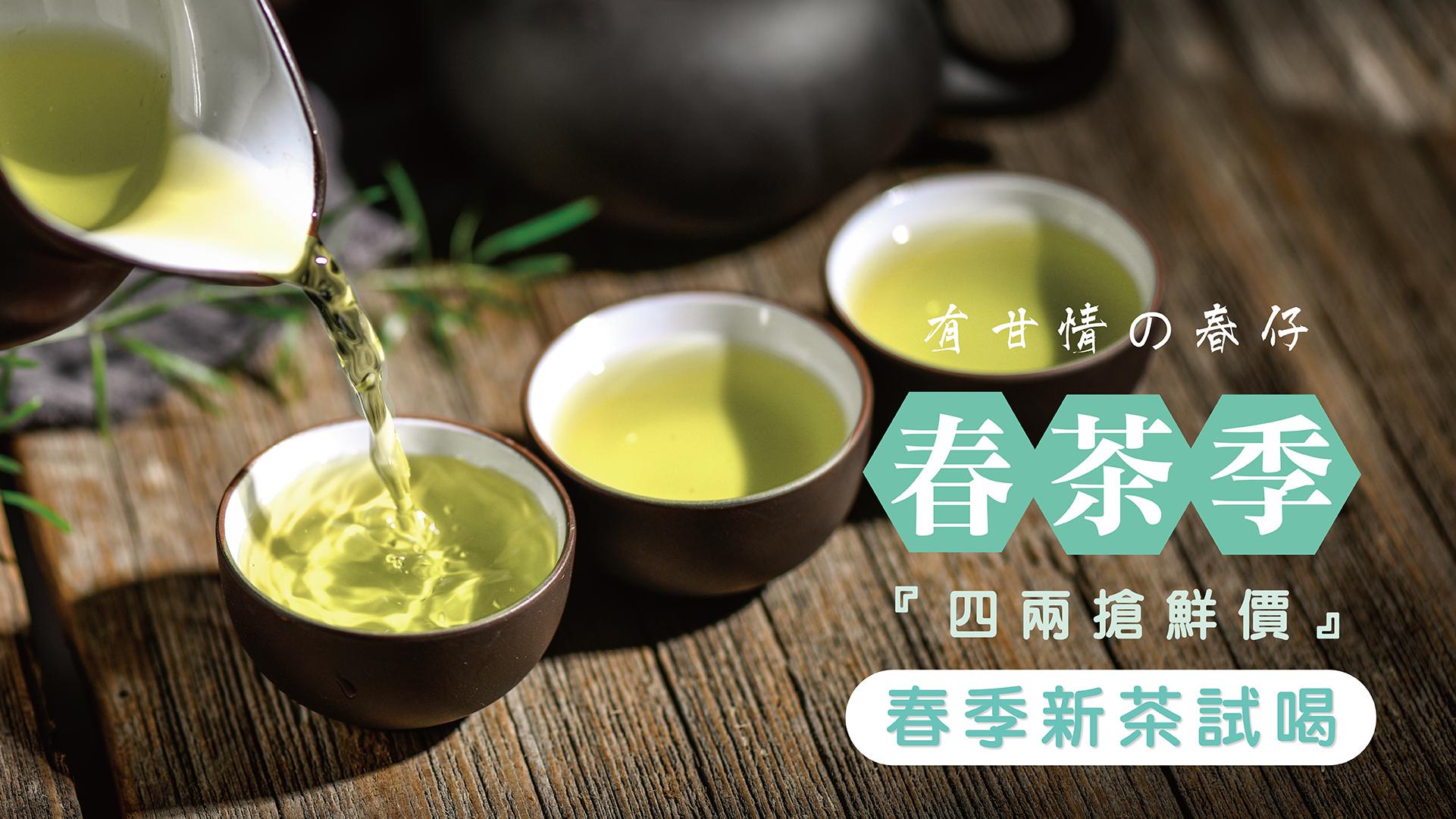 台灣春季高山茶新上市 小包裝優惠試喝包
