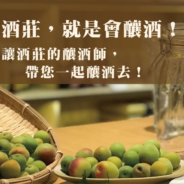 梅子酒 plum wine