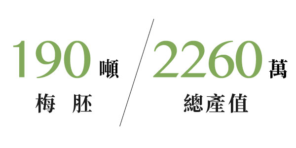 自2013年起先後已累積了34位契作梅農,青梅總收購量超過200噸、梅胚190噸、梅胚屋140坪、總產值2260萬。