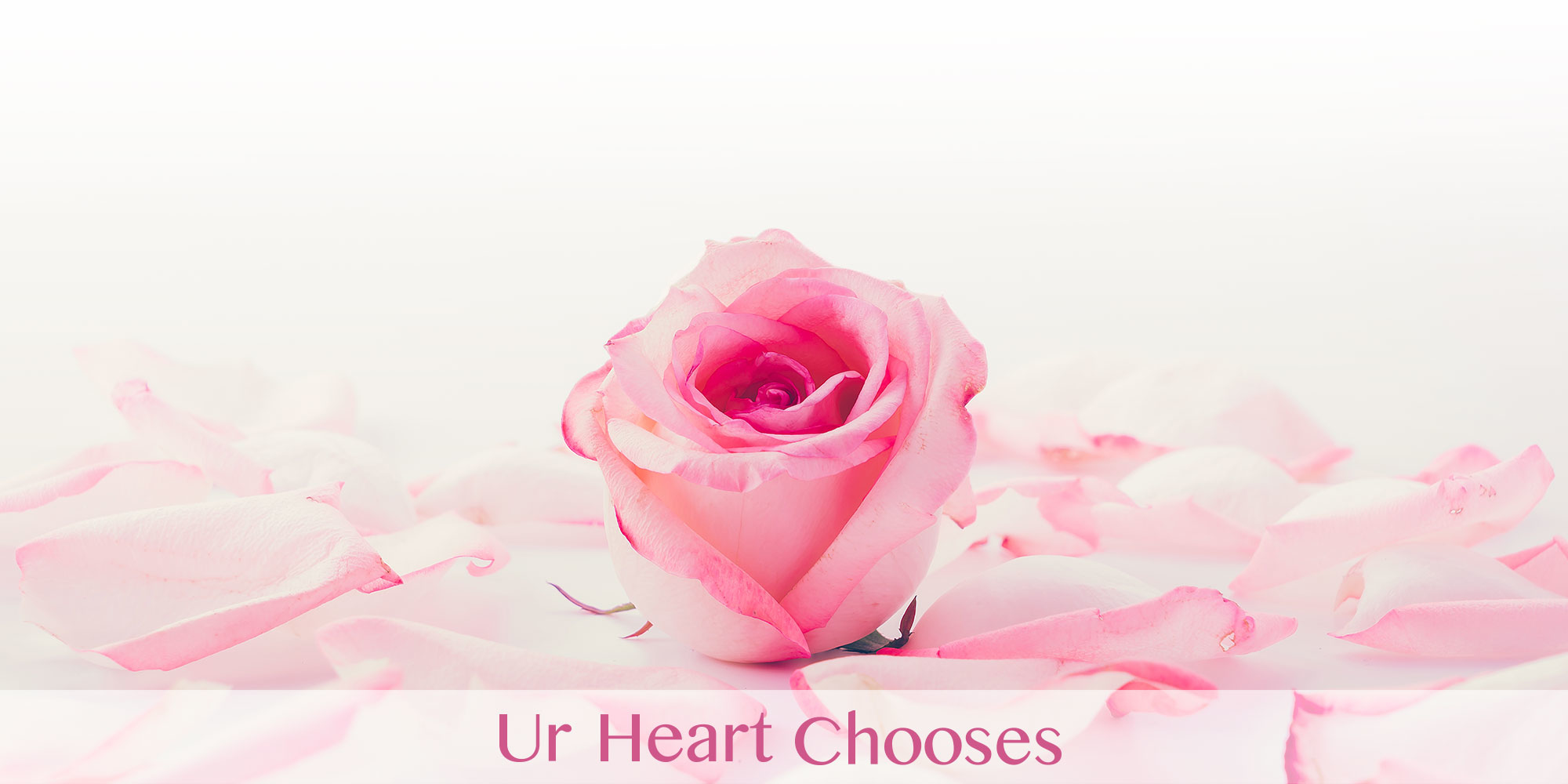 Ur heart Chooses