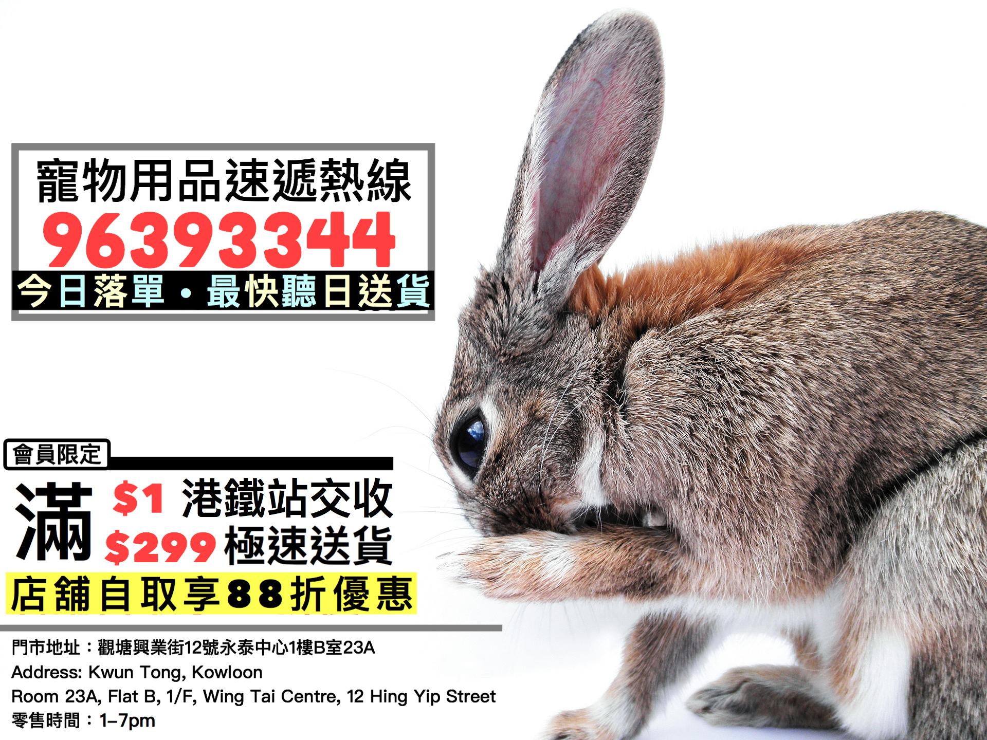 寵物寄養,寵物店,寵物用品,寵物用品店,兔仔用品,兔子,倉鼠,天竺鼠,龍貓,熊仔鼠,rabbit,chinchilla,guineapig,hamster,兔協,Iloverabbit,timothyhay,oxbow,momi