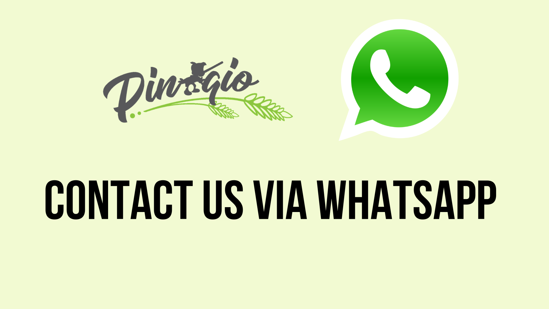 Whatsapp Pinnoqio
