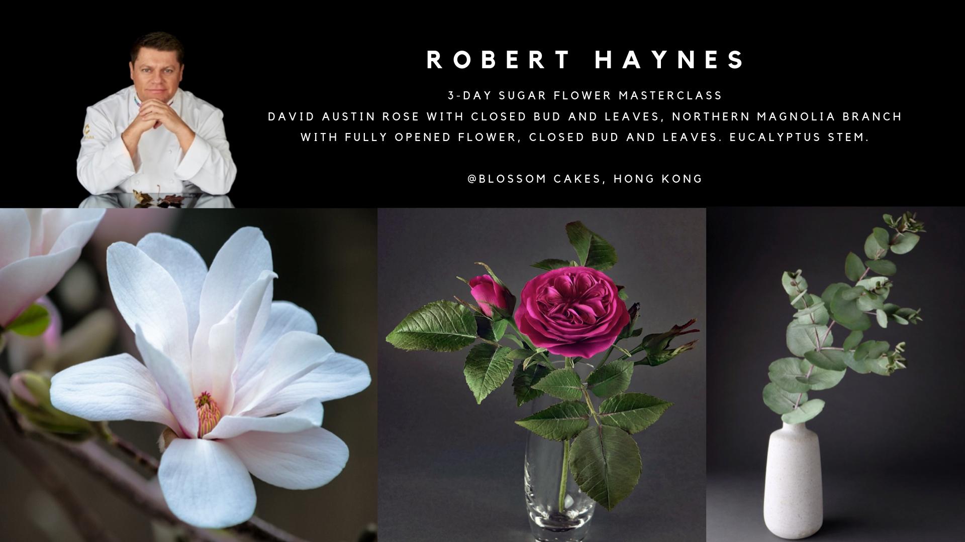 Robert Haynes Masterclass