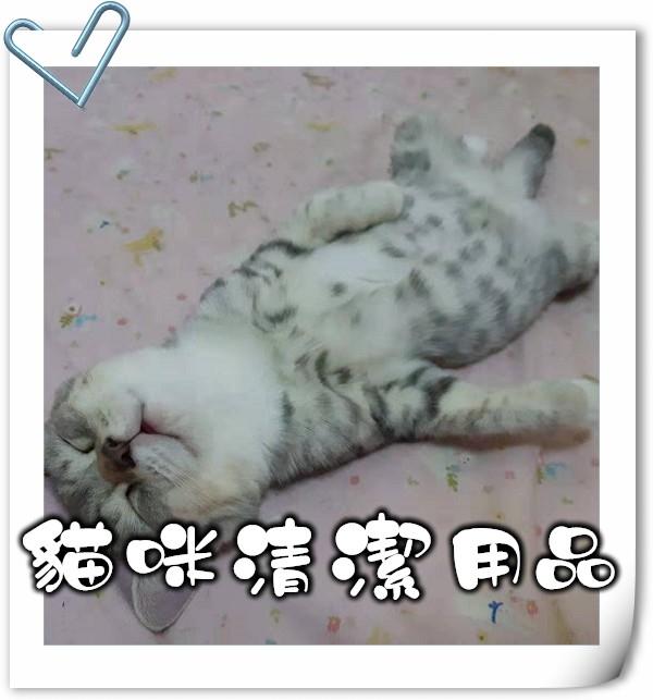 貓,貓咪,寵物用品,貓砂,貓糧,貓玩具,貓清潔,貓罐頭,貓零食,貓濕糧,乾糧,天然貓糧,脫水貓糧,貓小食,貓玩具,feline,canine,cat,pet,online pet,pet shop,cat food,cat cleaning