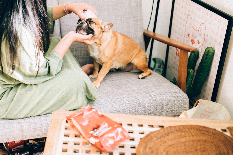 樂瑞森寵物生活 |  - 居家清潔保養日用
