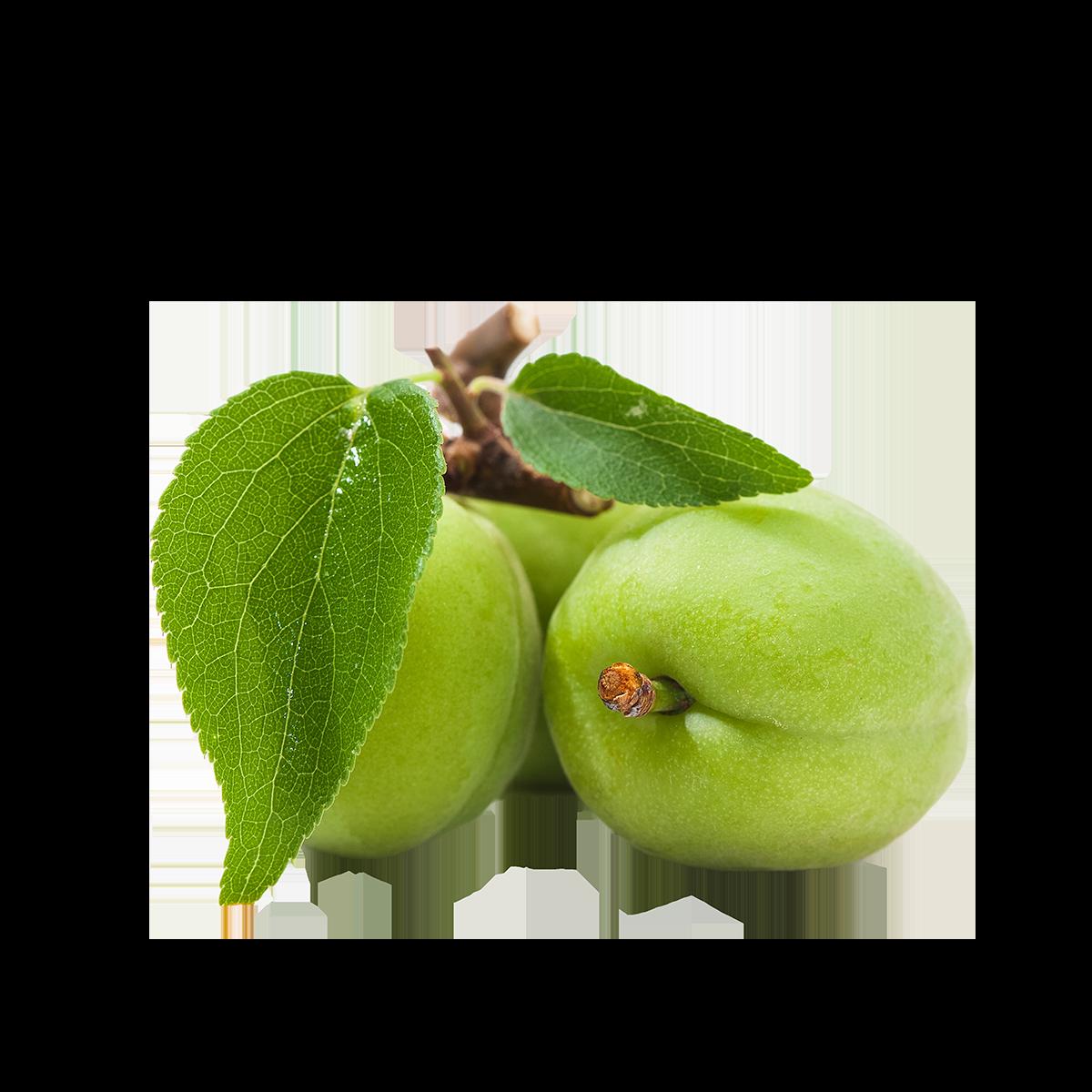 Kakadu Plum Extract-RARE SkinFuel