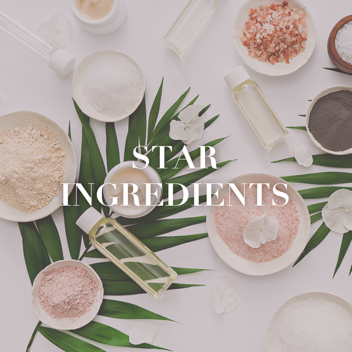 Star Ingredients-RARE SkinFuel