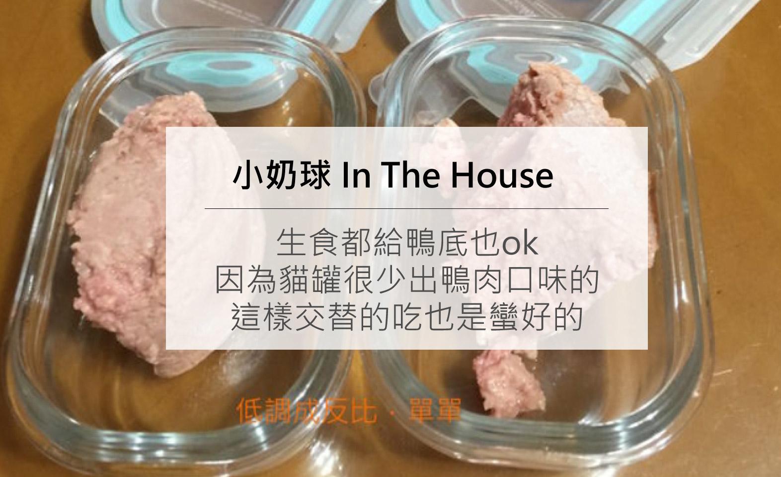 夏日的鴨肉生肉餐:貓罐很少出鴨肉口味的,這樣交替吃也是蠻好的。