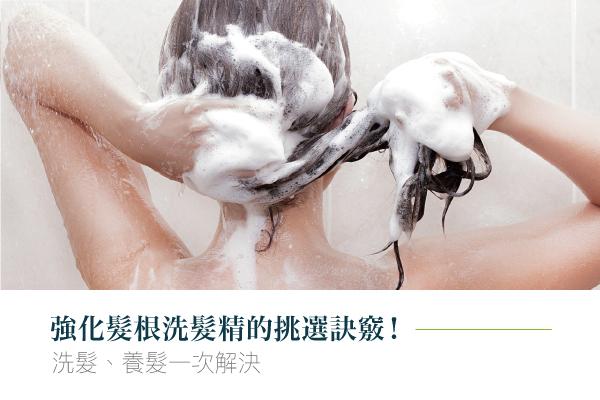 強化髮根洗髮精的挑選訣竅,洗髮、養髮一次解決