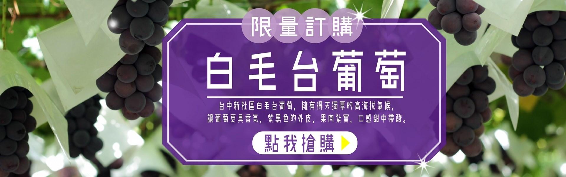 葡萄,禮盒,晴王,白毛台,無籽,加洲葡萄,女王頭,麝香葡萄