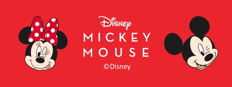 Disney,迪士尼,冰雪奇緣,米奇家族,小熊維尼,收納箱,迪士尼專賣店,Disney家族,艾莎與安娜,雪寶,米奇,米妮,小熊維尼,小豬,米奇與米妮,小熊維尼與小豬,餐具,保溫杯瓶