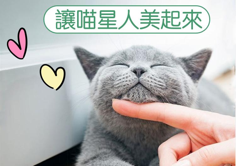 Blog-Cat01