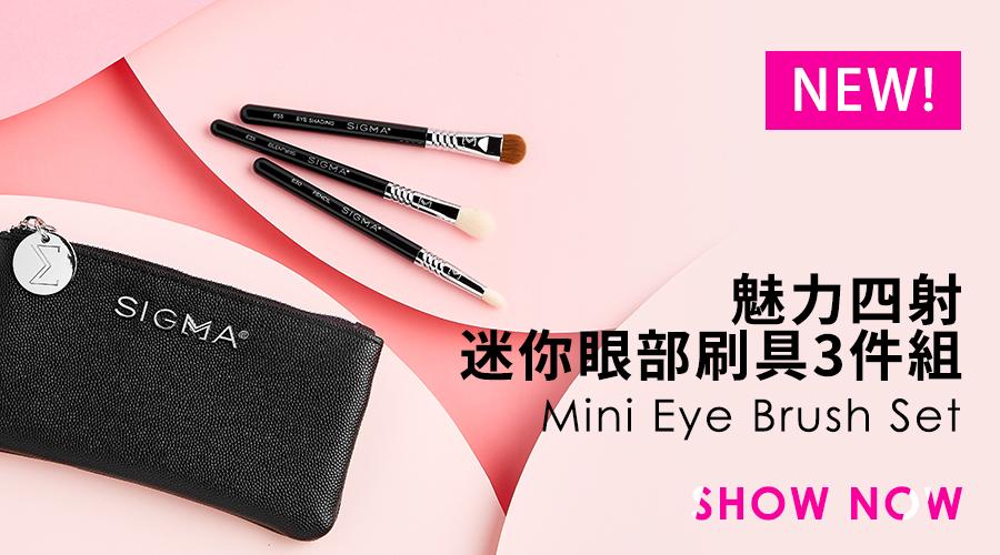 Sigma 魅力四射迷你眼部刷具3件組(附皮革化妝包) Glam 'N Go Mini Eye Brush Set