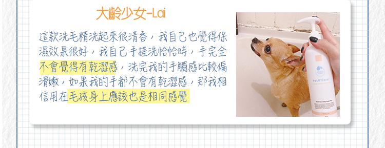 Dog-blogger 02