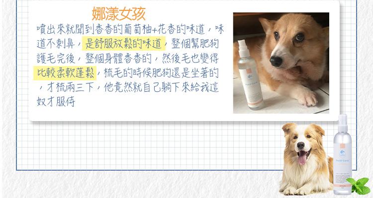 Dog-blogger 03
