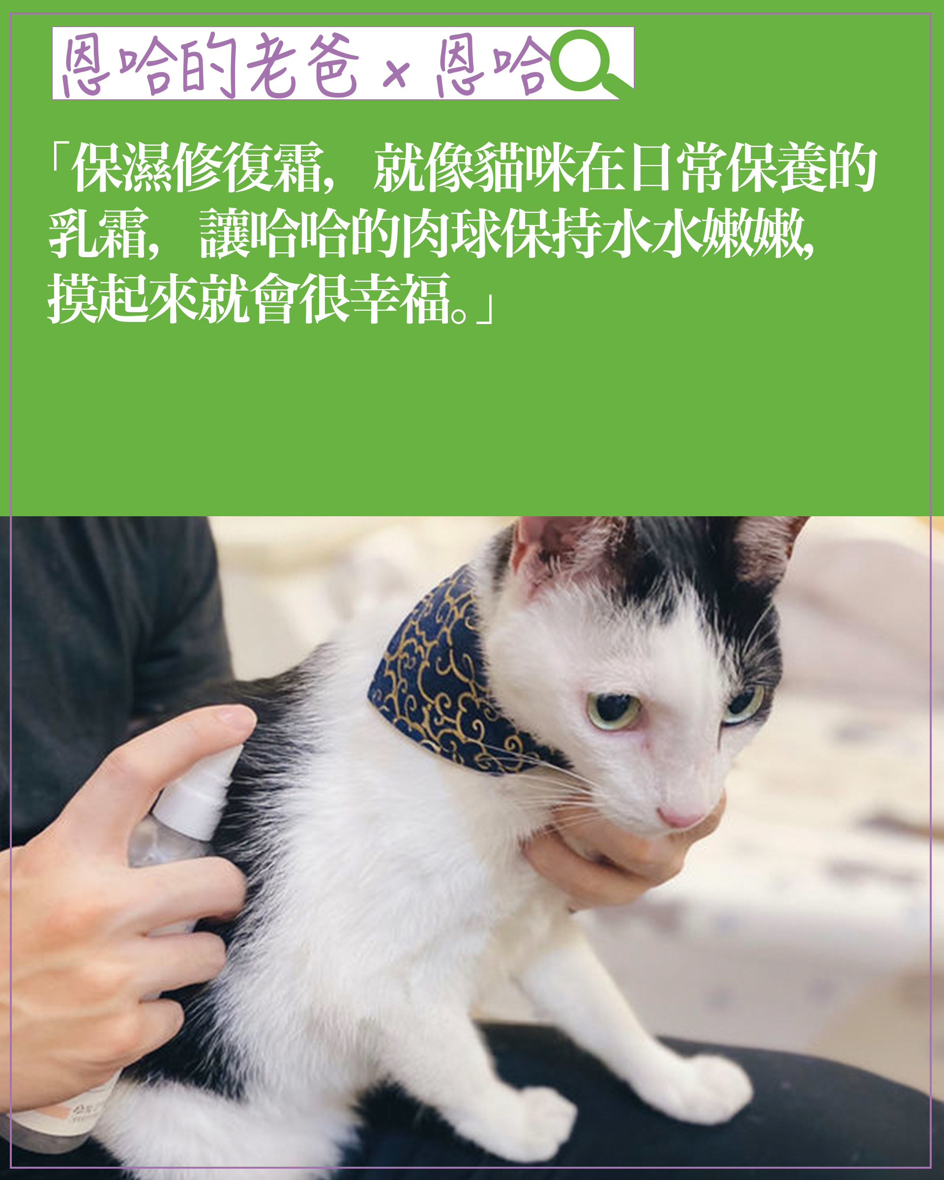 experience-cat05