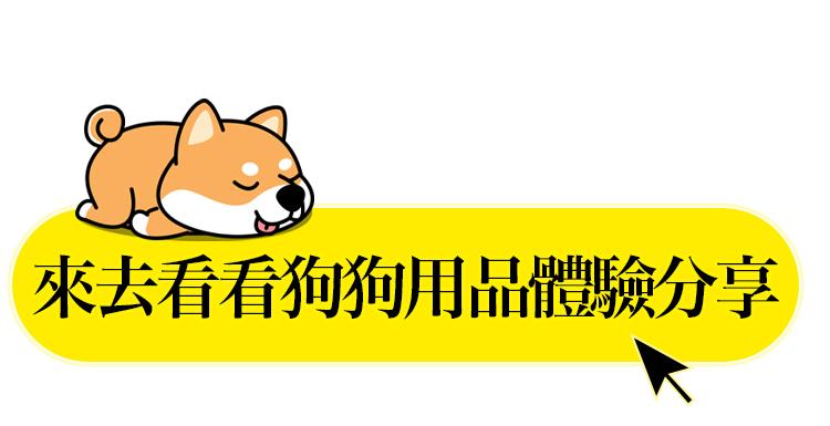 experience-dog click