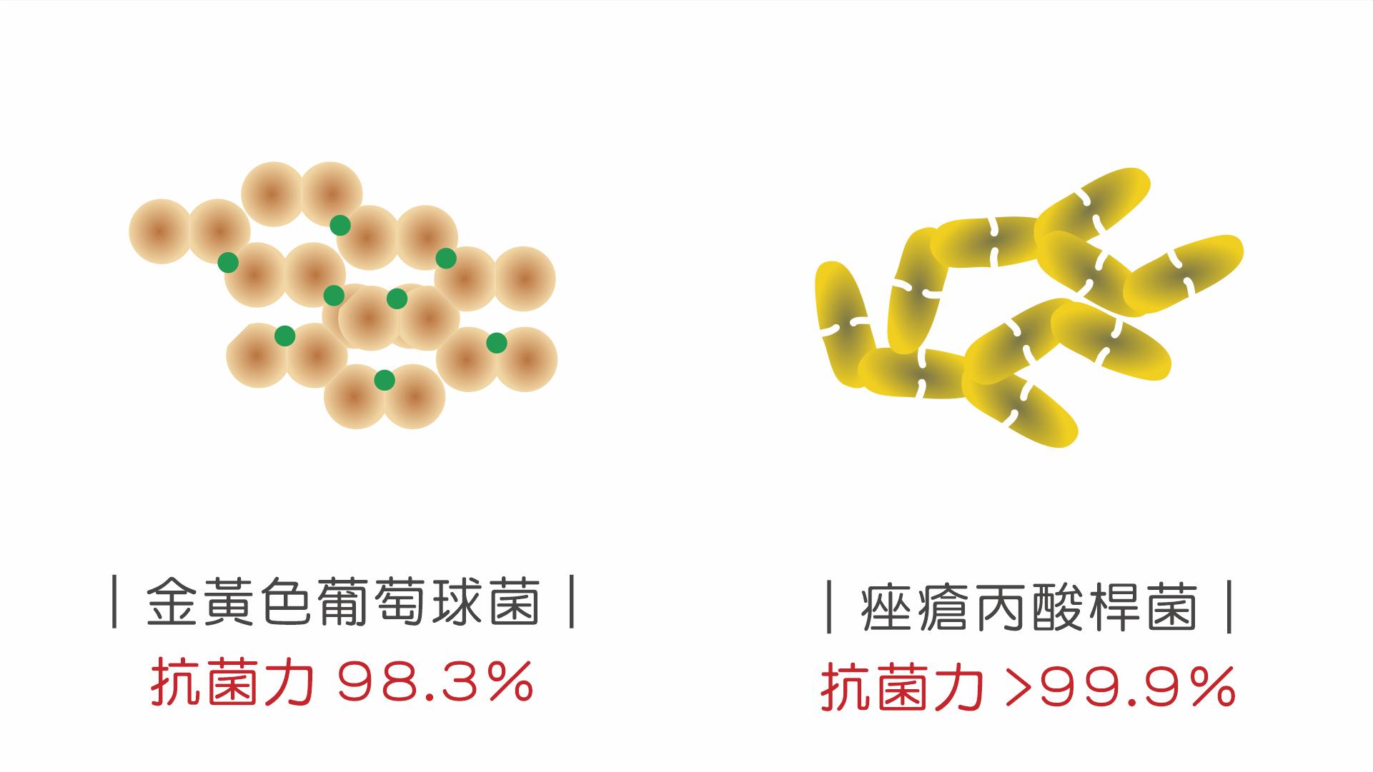 抗菌力 >99.9%