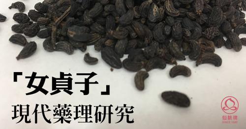 「女貞子」現代藥理研究