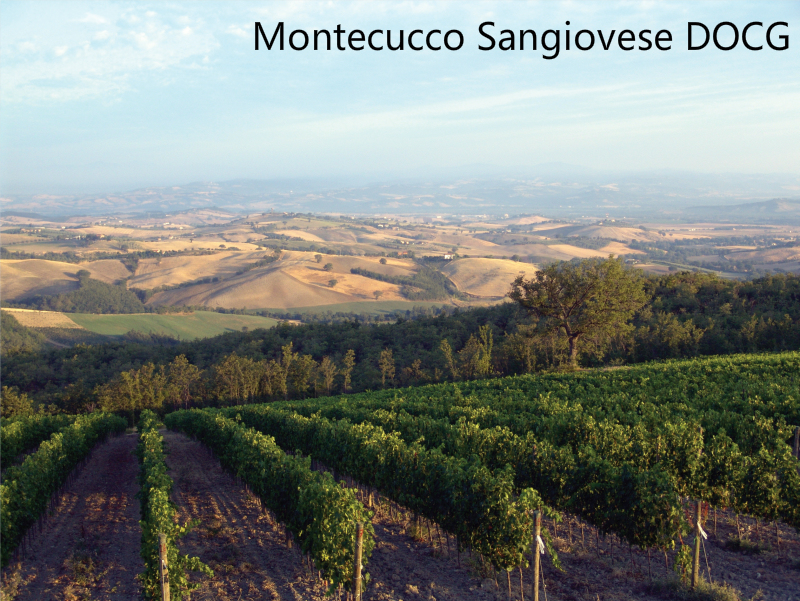 Montecucco Sangiovese DOCG