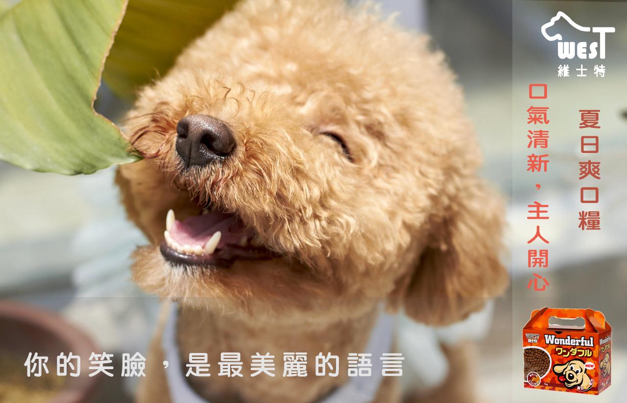 dog smile because of West savory dry dog food