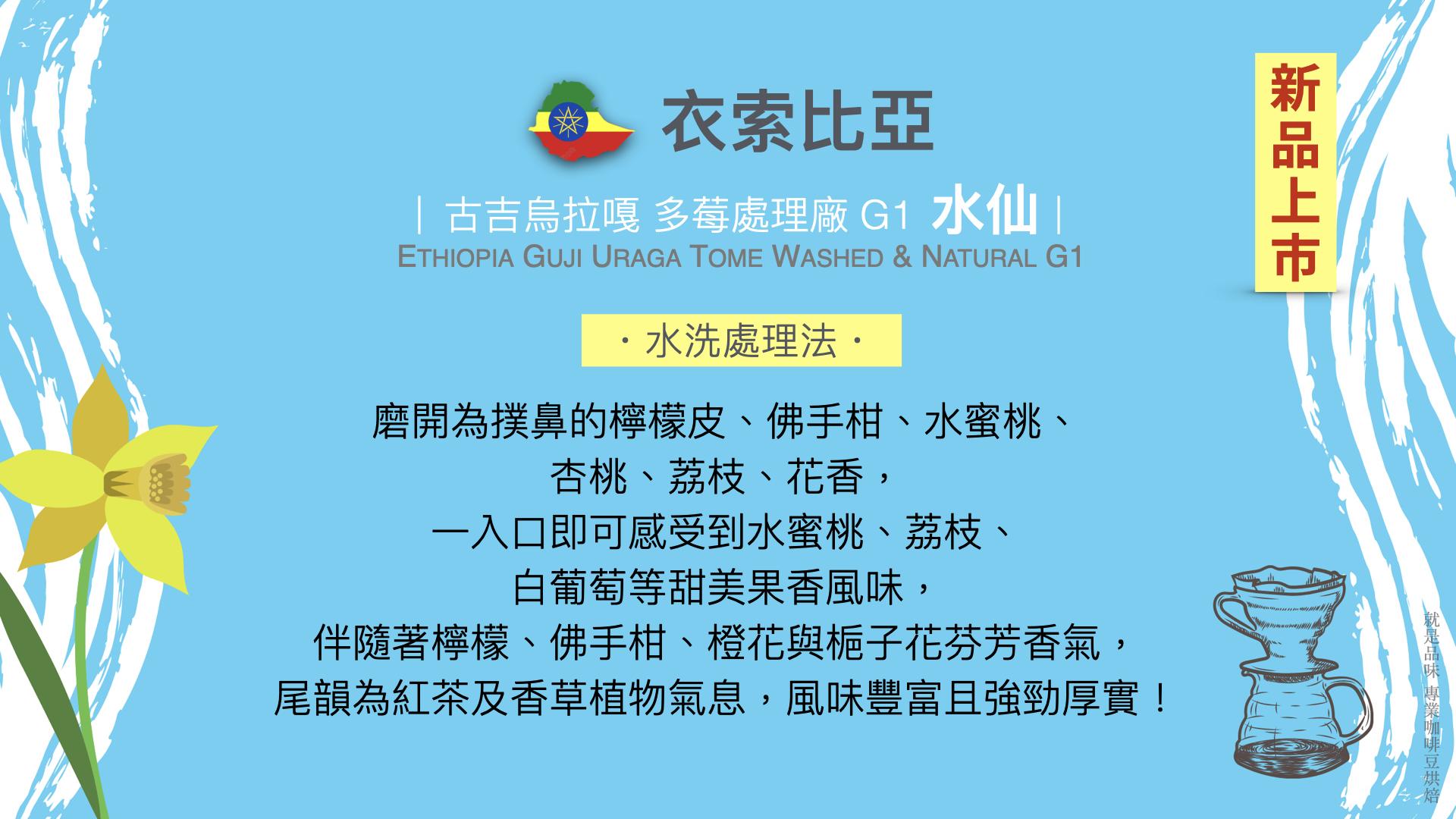 衣索比亞水洗處理水仙咖啡豆就是品味咖啡在台南安平