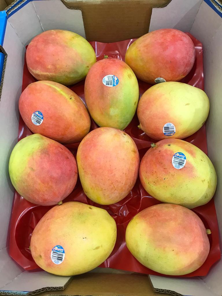 Calypso Mango from Australia