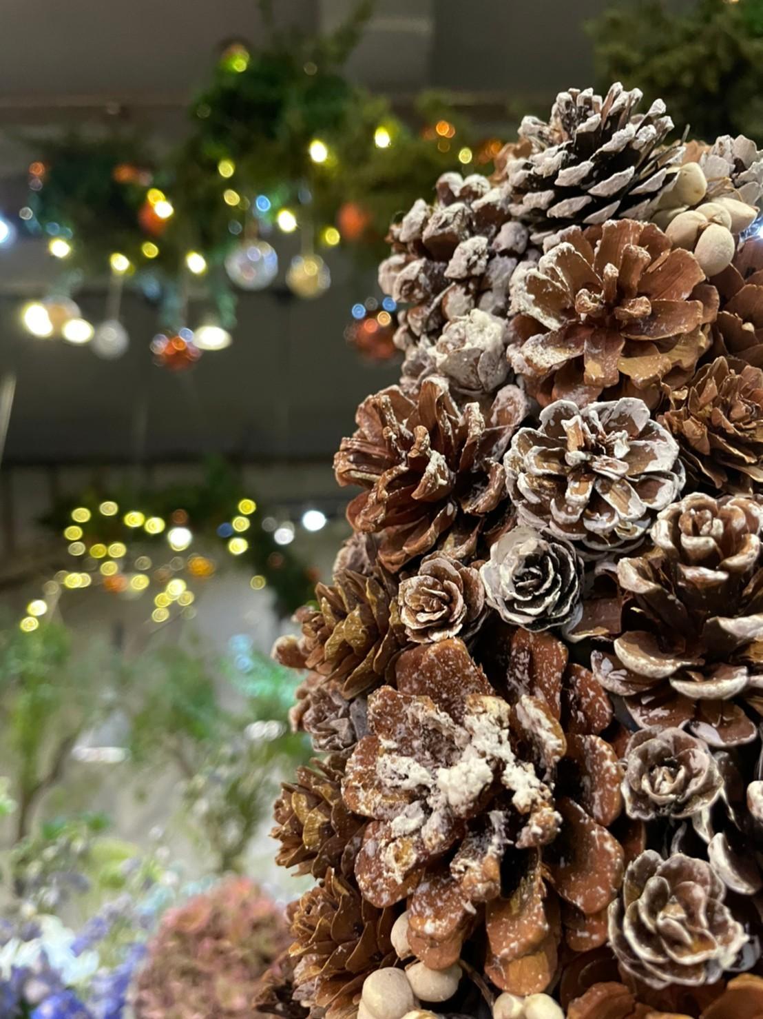 好樣思維聖誕松果樹課