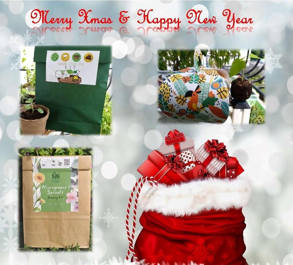 Xmas Gift, Growing Kit, 聖誕禮品, 種植禮品